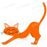 Orange (Ginger) cat stretching