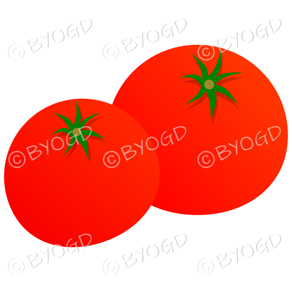 Raw whole tomatoes