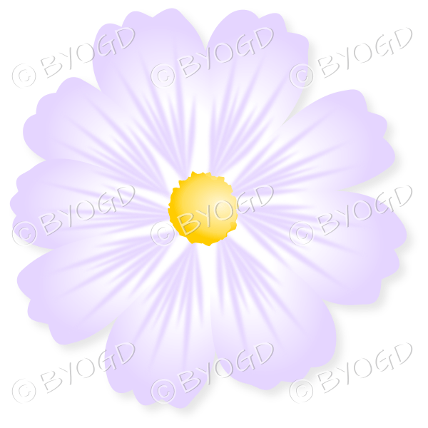 Pale purple flower with yellow centre be your own graphic designer pale purple flower with yellow centre mightylinksfo