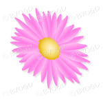 Pink flower with yellow middle tilted sideways