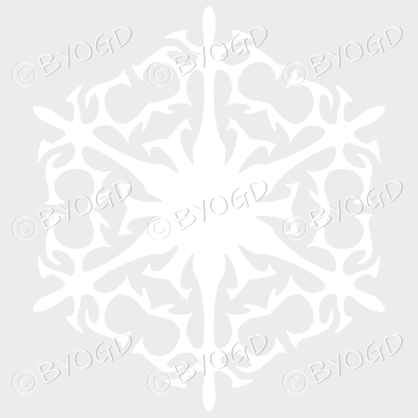 White snowflake C – beautifully detailed on a clear background