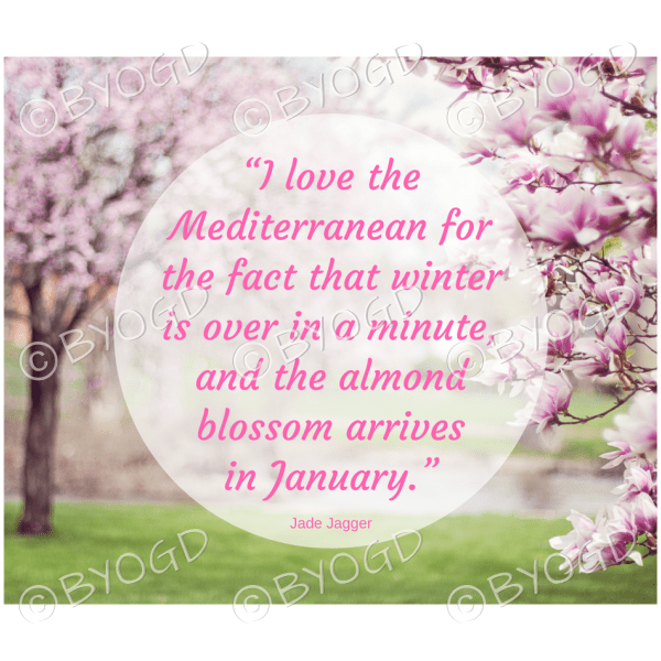 """Quote image 12: """"I love the Mediterranean for"""