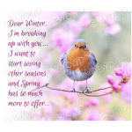 Quote image 44: Dear Winter I'm breaking up with you…