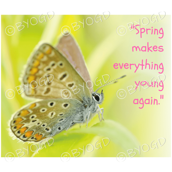 Quote image 59: Spring makes everything young again