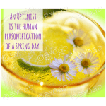 Quote image 60: An optimist is the human personification of