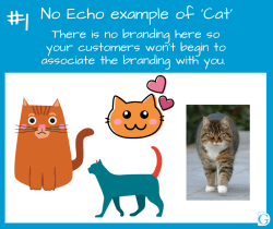 Echo image 1 - No echo example of Cats