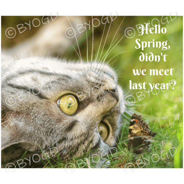 Quote image 71: Hello spring, didn't we meet last year?