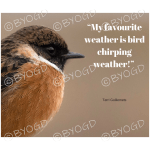 Quote image 88: My favourite weather is bird chirping weather!