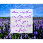 Quote image 95: May, more than any other month