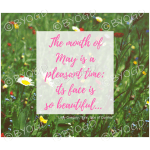 Quote image 96: The month of May is a pleasant time