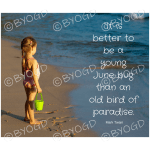 Quote image 116: It is better to be a young June bug