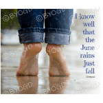 Quote image 117: I know well that June rains