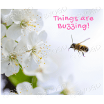Quote image 119: Things are buzzing