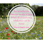 Quote image 123: It's beautiful the Summer month of June