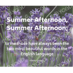 Quote image 132: Summer Afternoon, Summer Afternoon