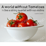 Quote image 138: A world without tomatoes