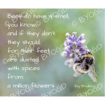 Quote image 142: Bees do have a smell you know