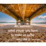 Quote image 148: Ah, summer what power you have