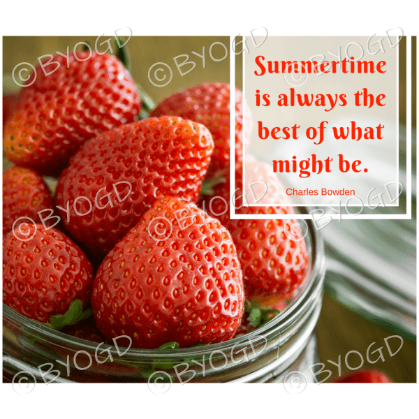Quote image 153: Summertime is always the best