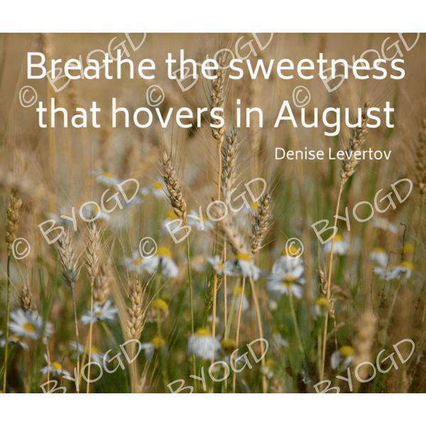 Quote image 169: Breathe the sweetness