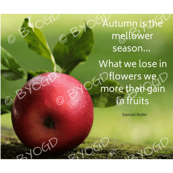 Quote image 172: Autumn is the mellower season