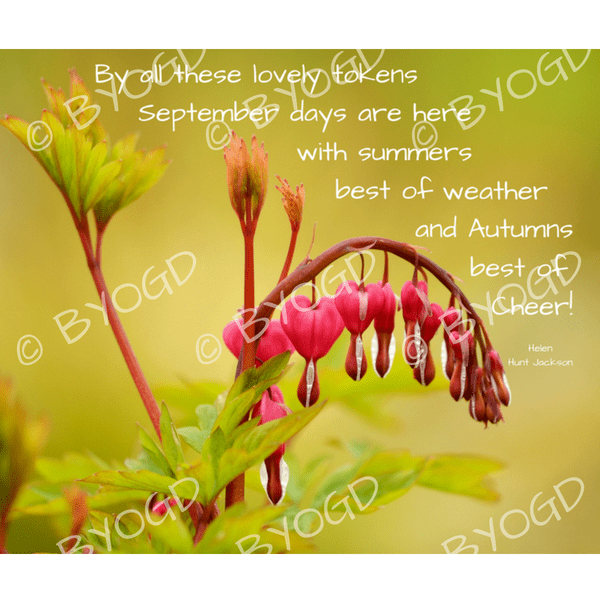 Quote image 174: By all these lovely tokens September days
