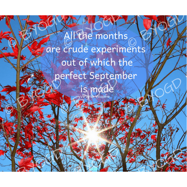 Quote image 175: All the months are crude experiments