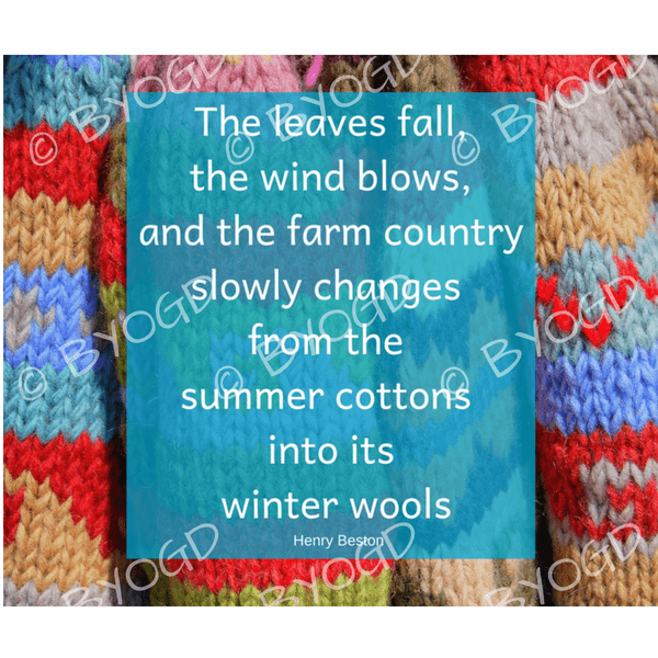 Quote image 178: The leaves fall, the wind blows