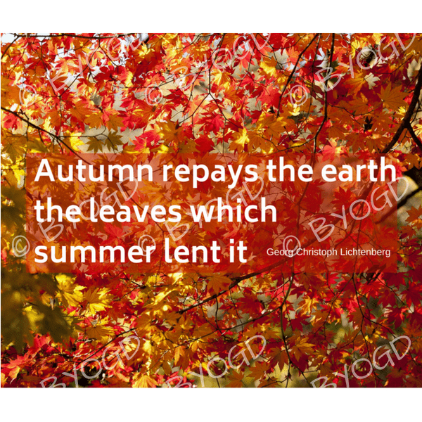 Quote image 185: Autumn repays the earth the leaves