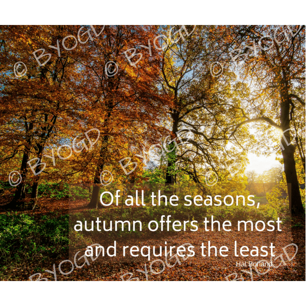 Quote image 189: Of all the seasons, autumn offers the most
