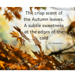Quote image 208: The crisp scent of the autumn leaves