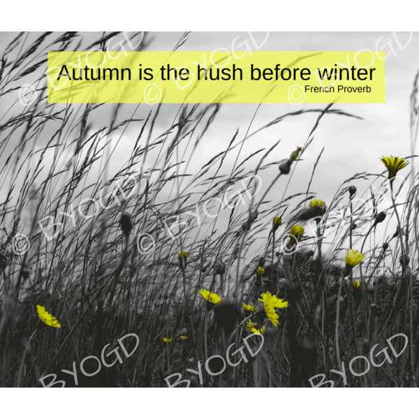 Quote image 210: Autumn is the hush