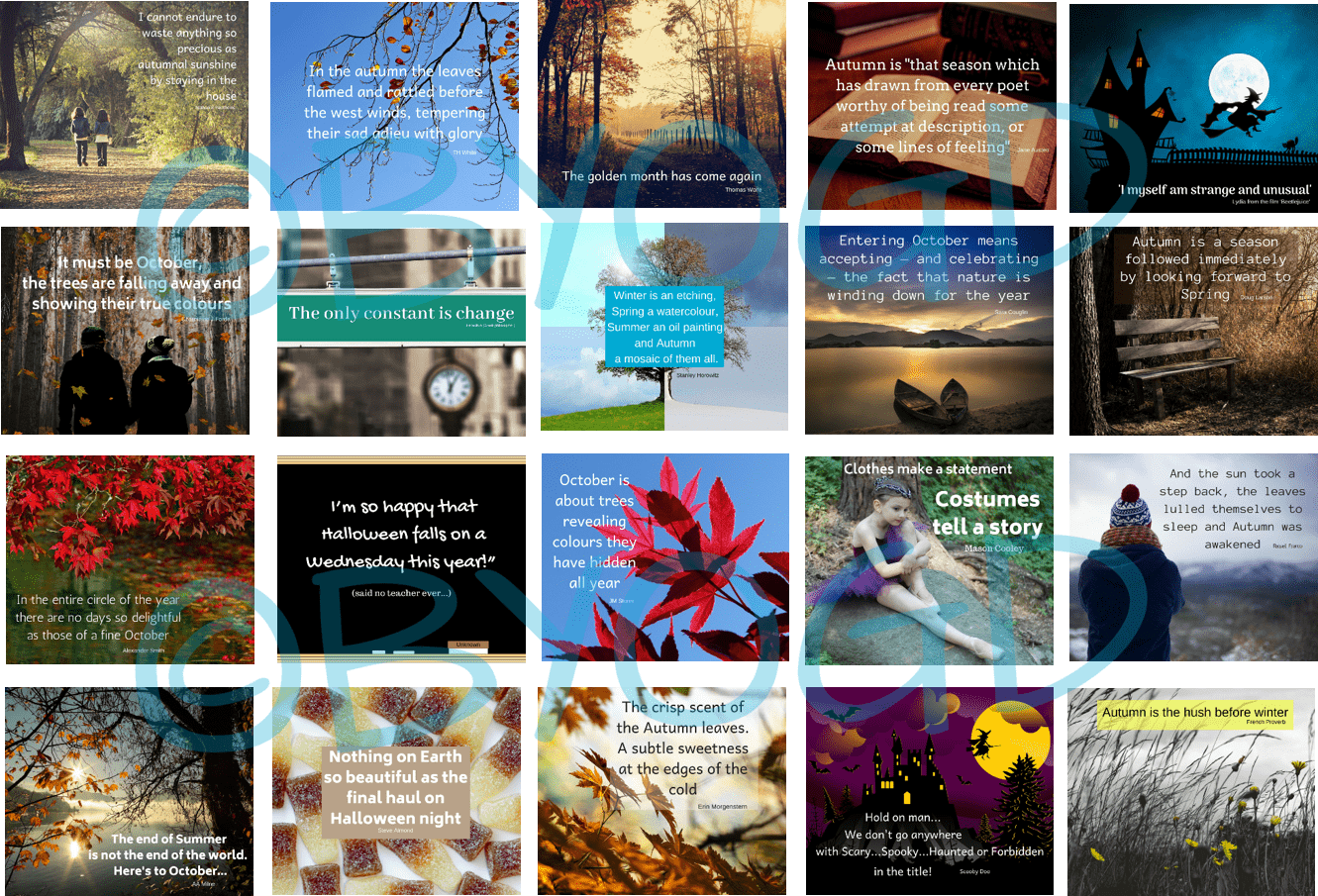 20 Ready-made January Social Media Quotes