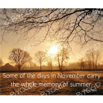 Quote image 212: Some of the days in November carry