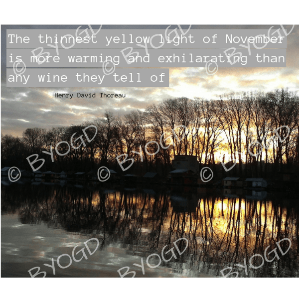 Quote image 218: The thinnest yellow light of November