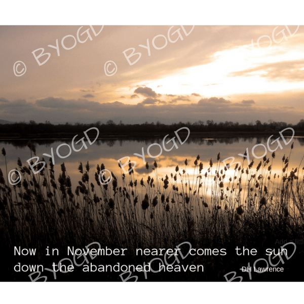 Quote image 226: Now in November nearer comes