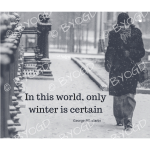 Quote image 239: In this world only winter is certain