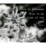 Quote image 240: This is my December