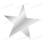 Silver Glitter effect star.